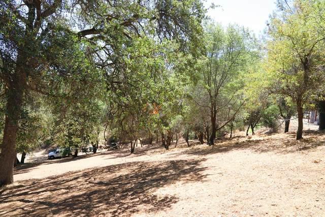 1573 Zapata Drive, El Dorado Hills, CA 95762 (MLS #20045409) :: The Merlino Home Team