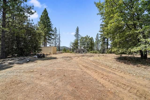 23061 Hells Hollow Road, Groveland, CA 95321 (MLS #20045827) :: The Merlino Home Team