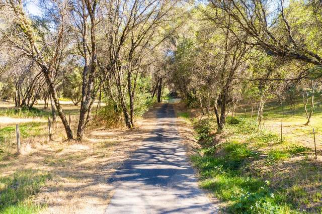 18778 Mustang Valley Place, Grass Valley, CA 95949 (MLS #20046012) :: Dominic Brandon and Team