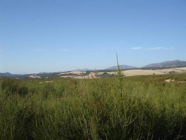 10 Piney Creek Road, Coulterville, CA 95311 (MLS #20046525) :: The MacDonald Group at PMZ Real Estate
