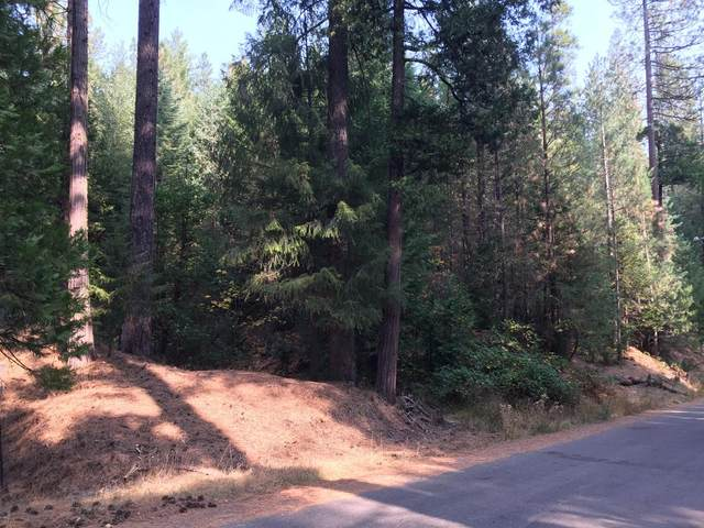 7676 Winding Wa, Grizzly Flats, CA 95636 (MLS #20046921) :: The MacDonald Group at PMZ Real Estate