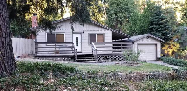 2890 Fir Drive, Pollock Pines, CA 95726 (MLS #20047558) :: Dominic Brandon and Team