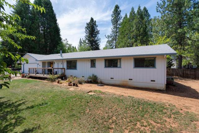 13895 Shadow Glen Court, Pine Grove, CA 95665 (MLS #20048482) :: Dominic Brandon and Team