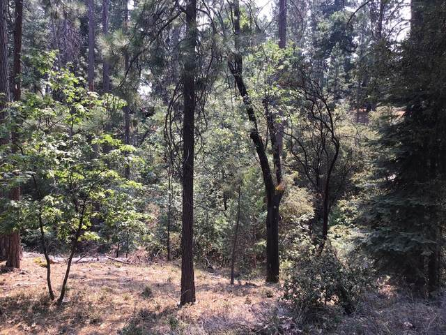 0 Cedarwood Alley, Placerville, CA 95667 (MLS #20048491) :: The MacDonald Group at PMZ Real Estate