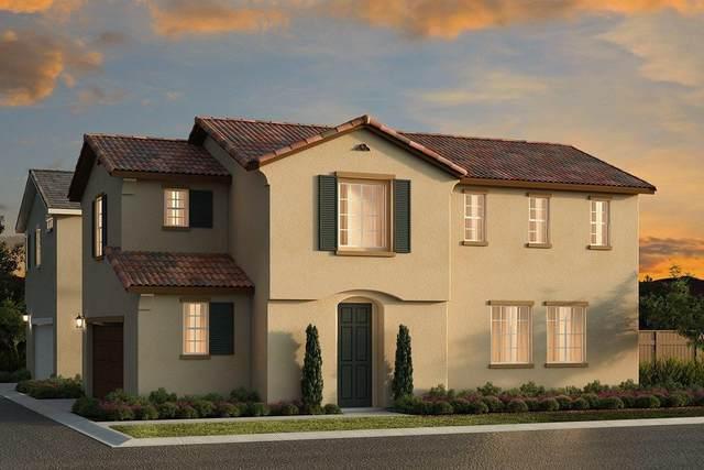 8787 Sheldon Terrace Lane, Elk Grove, CA 95758 (MLS #20048707) :: Keller Williams - The Rachel Adams Lee Group