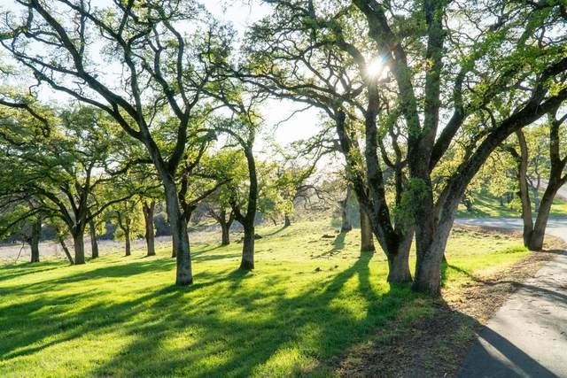 0-Lot 32 Heredia Estates, Auburn, CA 95603 (MLS #20048787) :: 3 Step Realty Group