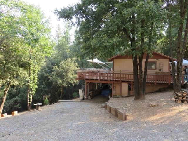 297 Sandy Gulch Lane, West Point, CA 95255 (MLS #20048843) :: The Merlino Home Team