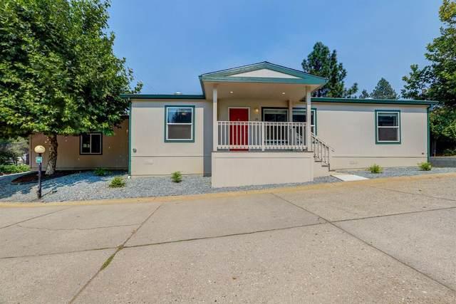 450 Gladycon Road #79, Colfax, CA 95713 (MLS #20049920) :: Paul Lopez Real Estate