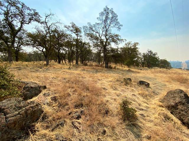 0 Pinecrest Road, Oroville, CA 95966 (MLS #20050168) :: Keller Williams Realty