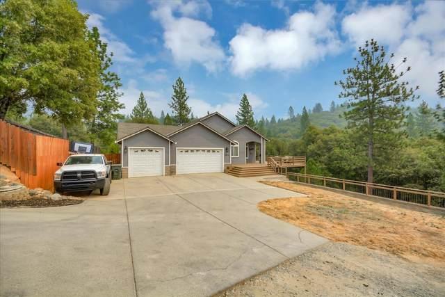 19674 Pitts Drive, Pine Grove, CA 95665 (MLS #20051569) :: Heidi Phong Real Estate Team
