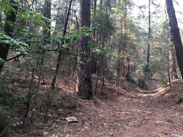 0 Red Robin Road, Placerville, CA 95667 (MLS #20052341) :: The MacDonald Group at PMZ Real Estate