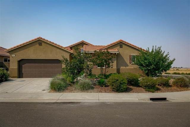 4033 Jerome Way, Roseville, CA 95747 (MLS #20053006) :: Dominic Brandon and Team
