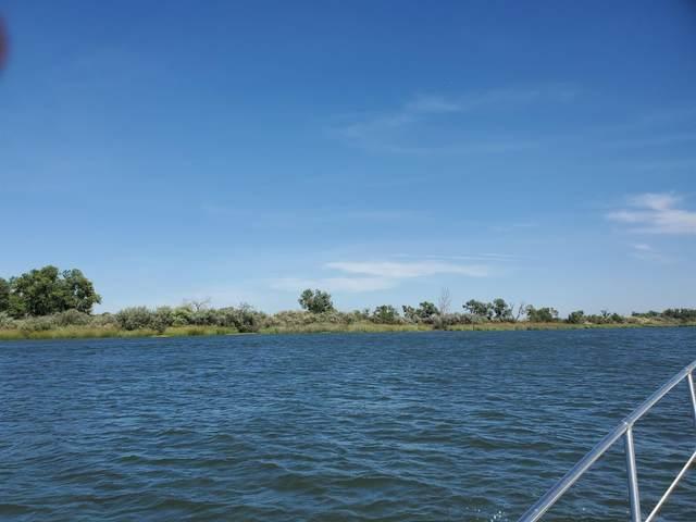 11330 W Spud Island, Stockton, CA 95219 (MLS #20053381) :: Keller Williams - The Rachel Adams Lee Group