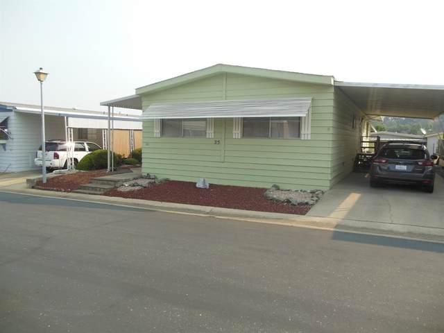 25 Del Vista, Sutter Creek, CA 95685 (MLS #20053787) :: Keller Williams - The Rachel Adams Lee Group