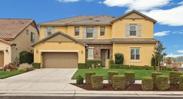 18611 Back Bay Drive, Lathrop, CA 95330 (MLS #20054740) :: REMAX Executive