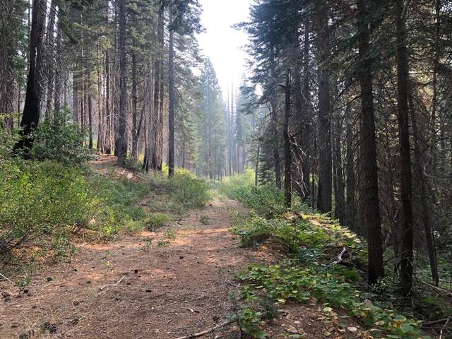 0 Foresthill/Soda Springs Road, Emigrant Gap, CA 95715 (MLS #20054813) :: Dominic Brandon and Team
