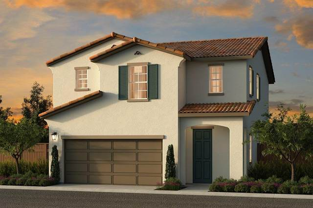 8200 Zenia Lane, Elk Grove, CA 95758 (MLS #20055130) :: Keller Williams - The Rachel Adams Lee Group