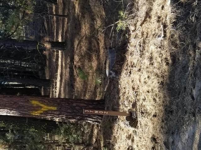 0 Anderson Ranch Road, Other, CA 96009 (MLS #20055270) :: Deb Brittan Team