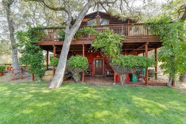 10800 Beaver Loop, Ione, CA 95640 (MLS #20055442) :: Live Play Real Estate | Sacramento