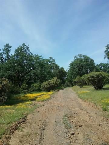 17530 Ponderosa Way, Brownsville, CA 95919 (MLS #20055575) :: Keller Williams Realty