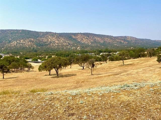 180 Hawkridge Road, Copperopolis, CA 95228 (MLS #20055816) :: The MacDonald Group at PMZ Real Estate
