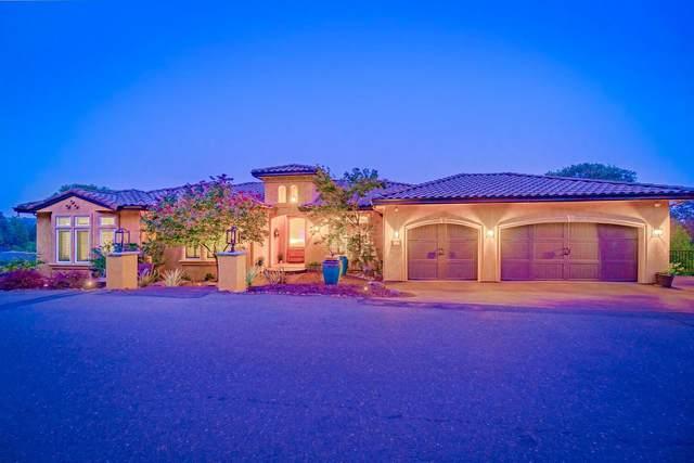 3542 Park Drive, El Dorado Hills, CA 95762 (MLS #20055984) :: REMAX Executive