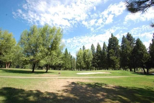 26621 Golf Links Drive, Pioneer, CA 95666 (MLS #20056046) :: Dominic Brandon and Team