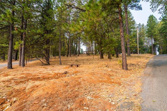 17080 Norlene Way, Grass Valley, CA 95949 (MLS #20056302) :: The MacDonald Group at PMZ Real Estate