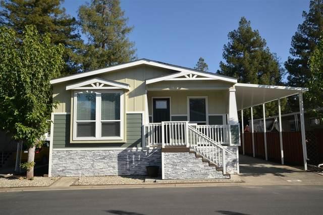 3231 Vineyard Ave. #98, Pleasanton, CA 94566 (MLS #20056385) :: Deb Brittan Team