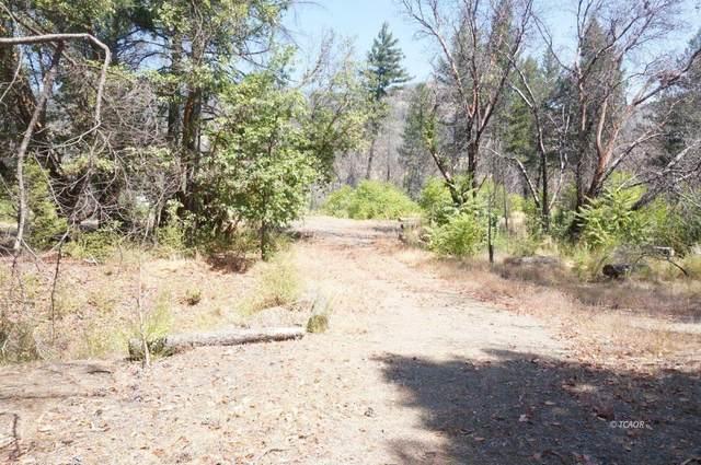 250 Bear Springs Rd, Junction City, CA 96048 (MLS #20057352) :: Keller Williams - The Rachel Adams Lee Group