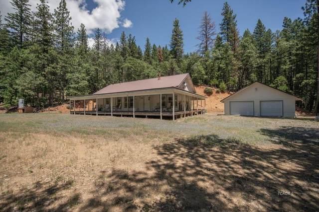 2875 Bear Creek Road, Weaverville, CA 96093 (MLS #20057698) :: Keller Williams - The Rachel Adams Lee Group