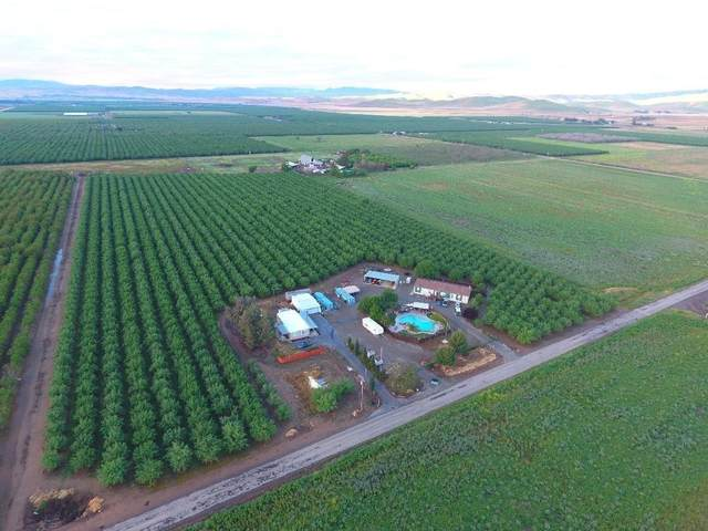 29677 Bunker Road, Gustine, CA 95322 (MLS #20058234) :: Heidi Phong Real Estate Team