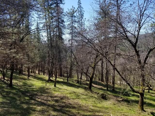 10024 Little Deer Drive, Grass Valley, CA 95949 (MLS #20058323) :: The Merlino Home Team