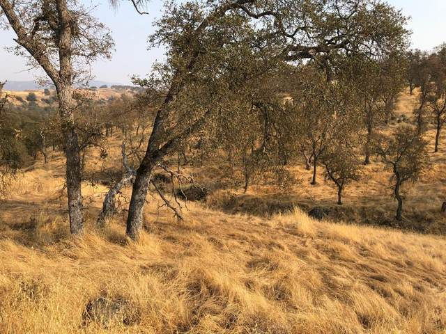 5087 Bane Road, Valley Springs, CA 95252 (MLS #20059019) :: Keller Williams - The Rachel Adams Lee Group