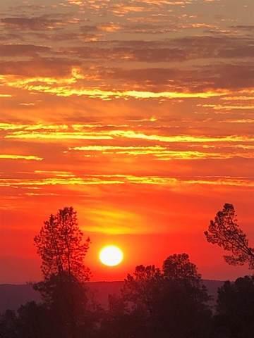 7820 Hammonton Smartville Road, Smartsville, CA 95977 (MLS #20059023) :: Keller Williams - The Rachel Adams Lee Group