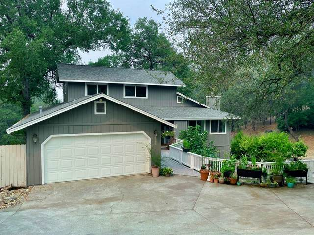 10955 Oak View Terrace, Auburn, CA 95603 (MLS #20059225) :: Deb Brittan Team