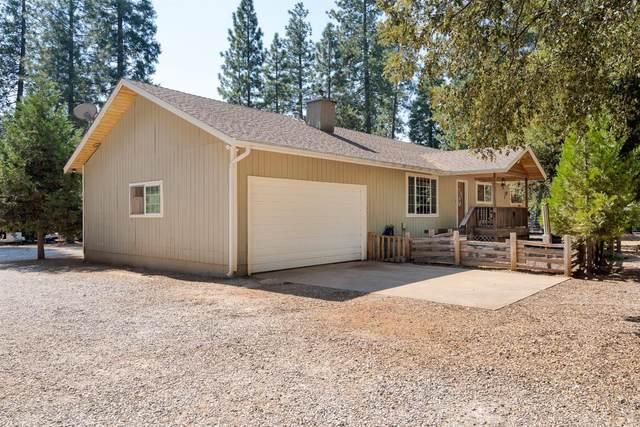 19160 Gold Creek Trail, Volcano, CA 95689 (MLS #20059603) :: Keller Williams - The Rachel Adams Lee Group