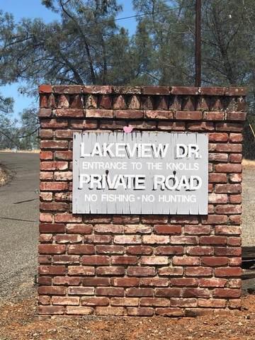 1 Lakeview Drive, Shingle Springs, CA 95682 (MLS #20059622) :: Keller Williams - The Rachel Adams Lee Group