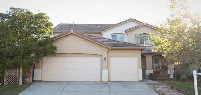 10141 Jenny Lynn Way, Elk Grove, CA 95757 (MLS #20060084) :: Heidi Phong Real Estate Team
