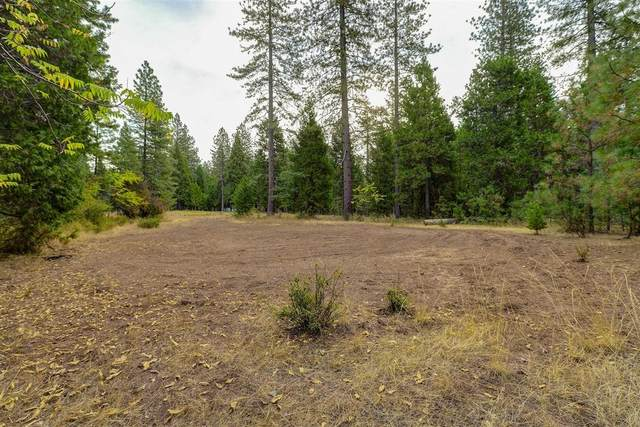 10993 Northview Drive, Nevada City, CA 95959 (#20060246) :: Jimmy Castro Real Estate Group