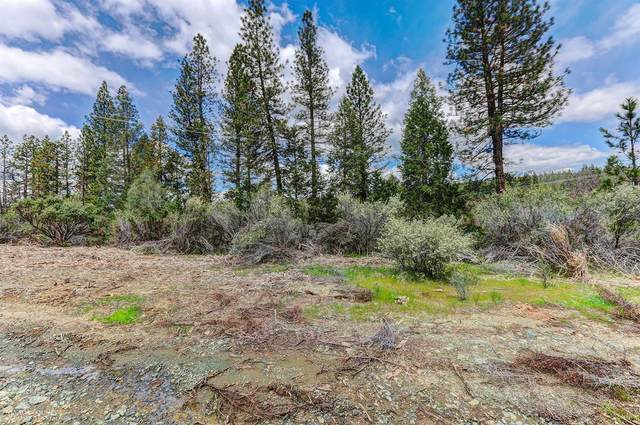 1349 Idaho Maryland Road, Grass Valley, CA 95945 (#20060811) :: Jimmy Castro Real Estate Group