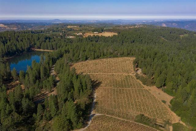 3400 Camino Ridge Drive, Camino, CA 95709 (MLS #20061922) :: The Merlino Home Team
