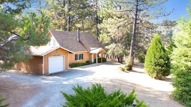 19551 Cottonwood, Groveland, CA 95321 (MLS #20062356) :: The Merlino Home Team