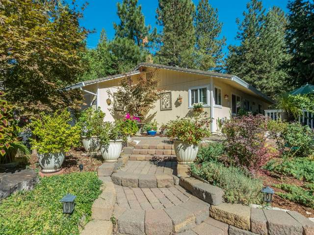 4201 Park Woods, Pollock Pines, CA 95726 (MLS #20062408) :: Dominic Brandon and Team