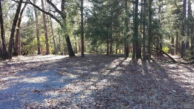 22090 Alton Trail, Foresthill, CA 95631 (MLS #20062787) :: Deb Brittan Team