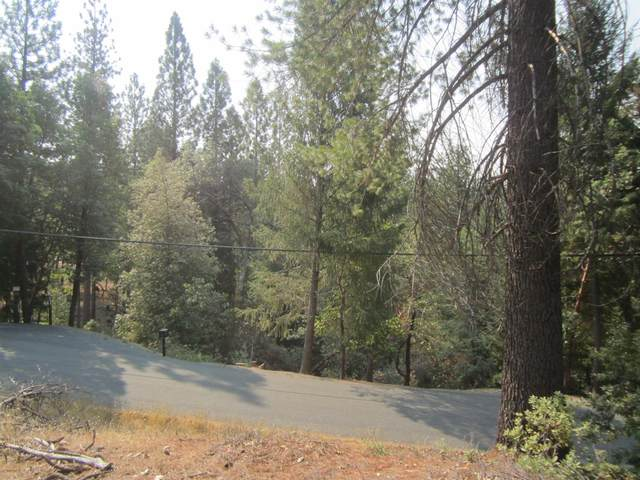 3377 Lupine Lane, Placerville, CA 95667 (MLS #20062954) :: Paul Lopez Real Estate