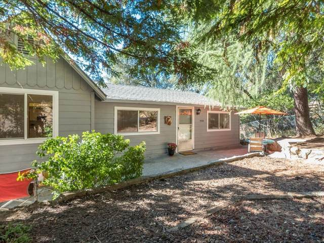 7330 Green Valley Road, Placerville, CA 95667 (MLS #20063508) :: Dominic Brandon and Team
