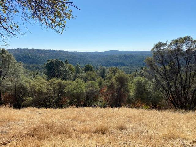 0 Duden Drive, Placerville, CA 95667 (MLS #20063547) :: The Merlino Home Team