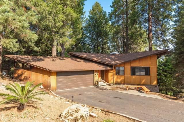 16530 Meadow Vista Drive, Pioneer, CA 95666 (MLS #20063595) :: Keller Williams - The Rachel Adams Lee Group