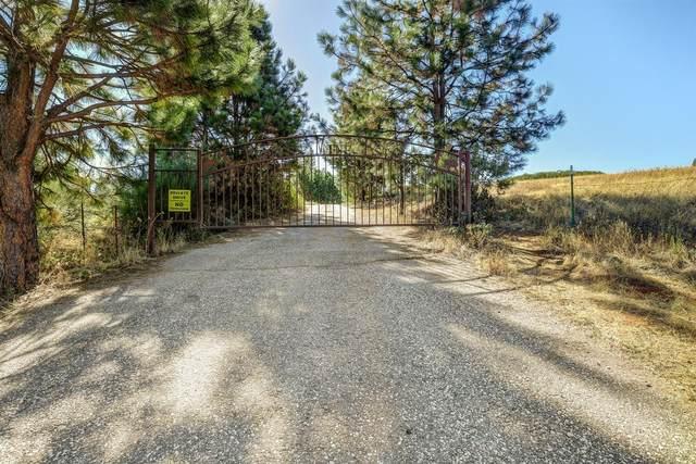 13433 Empress Road, Nevada City, CA 95959 (MLS #20063772) :: Keller Williams - The Rachel Adams Lee Group